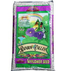 Pennington Safflower Seed Wild Bird Feed, 7 lbs