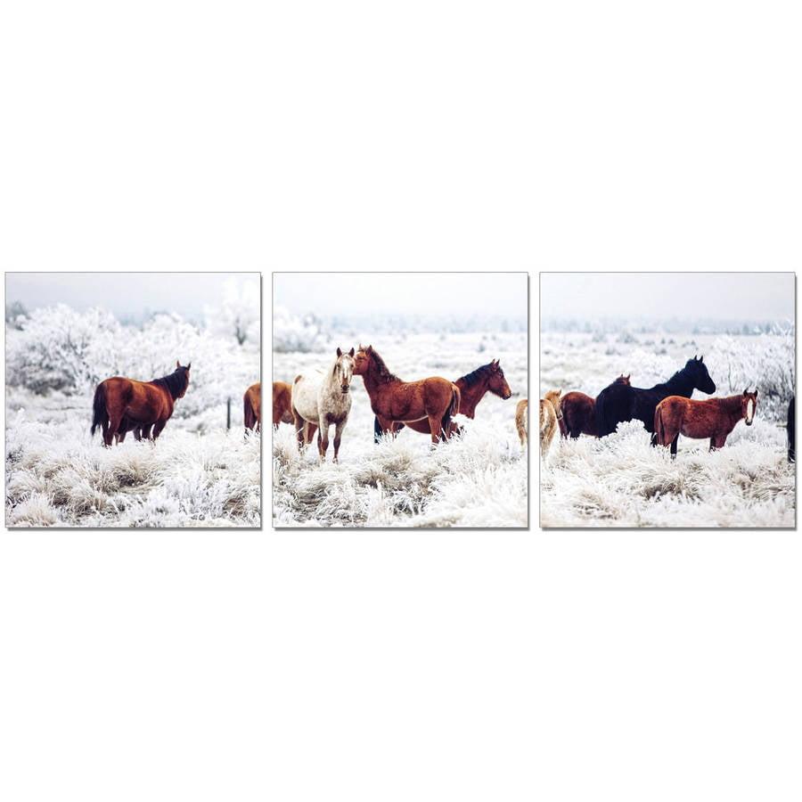 "Furinno SENIK Horses on Plains 3-Panel MDF Framed Photography Triptych Print, 72"" x 24"""