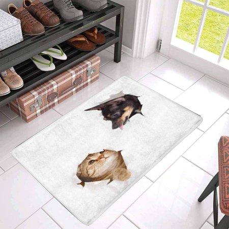 POP Cat and Dog in Paper Side Torn Hole Indoor Entrance Rug Floor Mats Shoe Scraper Doormat 30x18 Inches - image 2 of 3