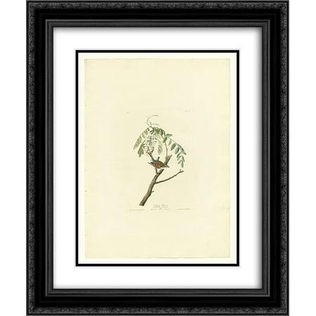 104 Matt - John James Audubon 2x Matted 20x24 Black Ornate Framed Art Print 'Plate 104 Chipping Sparrow'