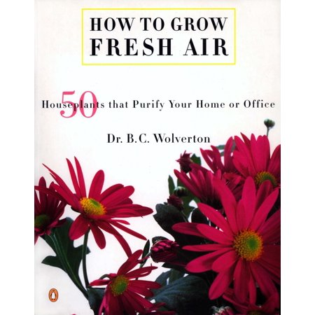 How to Grow Fresh Air : 50 House Plants that Purify Your Home or (Easy Plants To Grow In A Classroom)