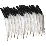 Creativity Street, PACAC4512, Imitation Eagle Feathers, 12 / Pack