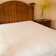 Downlite Whisper Soft Waterproof and Bed Bug Proof Mattress Encasement/ Protector