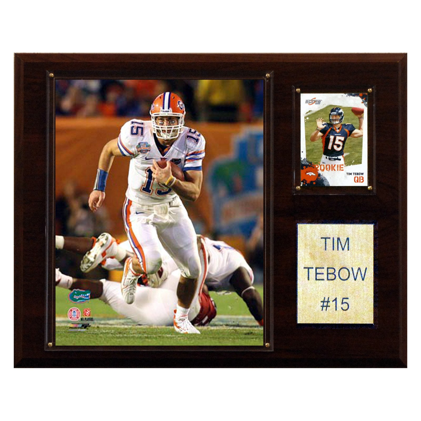C&I Collectables NCAA Football 12x15 Tim Tebow Florida Gators Player Plaque