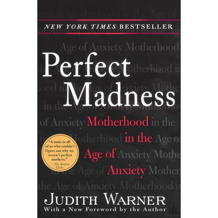 Perfect Madness : Motherhood in the Age of