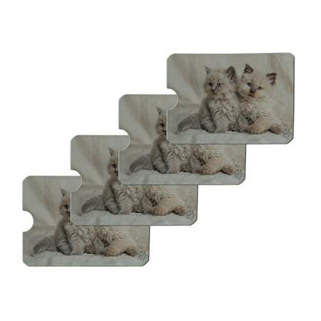 Miradoll Ragdoll Kitten Best Friends Credit Card RFID Blocker Holder Protector Wallet Purse Sleeves Set of