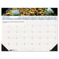 Sea Life Photographic Monthly Desk Pad Calendar, 22 X 17, 2019