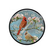 Accurite Indoor / Outdoor Cardinals Thermometer
