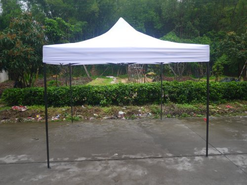 Canopy Tent 10 x 10 Commercial Fair Shelter Car Shelter Wedding Party Easy Pop Up by