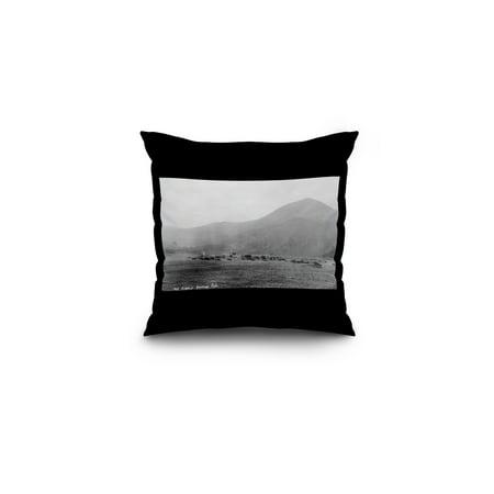 Hot Sulphur Springs, Colorado - Panoramic View of Town Photograph (16x16 Spun Polyester Pillow, Black