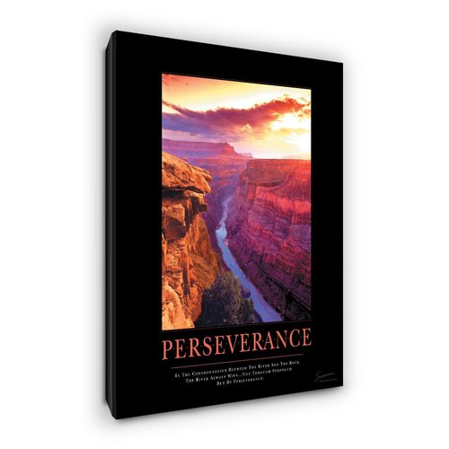 Successories Perseverance Canyon Motivational Photographic Print