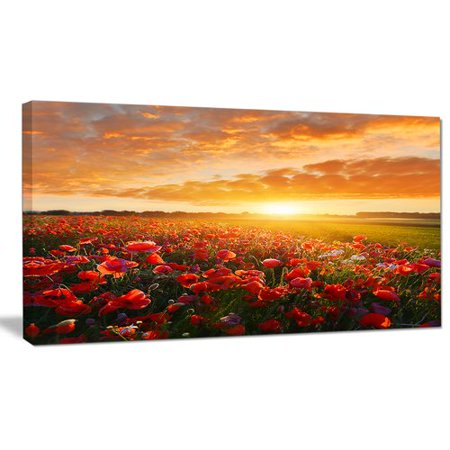 Beautiful Poppy (Design Art 'Beautiful Poppy Field at Sunset' Photographic Print on Wrapped Canvas)