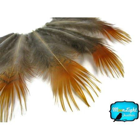1 Pack - Yellow Golden Pheasant Plumage Loose Feather 0.10 Oz.