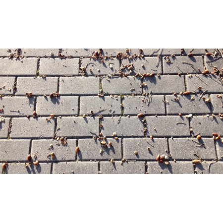 LAMINATED POSTER Road Street Floor Wing Dirty Dust Poster Print 24 x 36