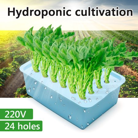 24 Holes Plant Site Hydroponic System Grow Kit Bubble Indoor Planting Box Cabinet Garden Aerobic Soilless Cultivation Plant , 220V (Grow Cabinets Kits)