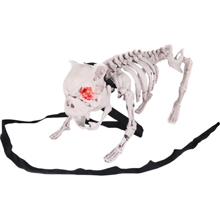 Barking Dog Skeleton Halloween Decoration](Plastic Halloween Dog Skeleton)