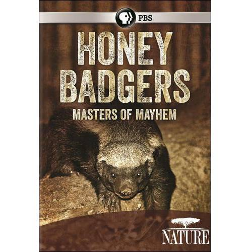 Nature: Honey Badgers: Masters Of Mayhem (Widescreen)