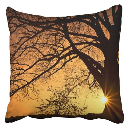 ECCOT Orange Landscape Silhouette of Willow Tree with The Sun Behind Sunset Sunrise Horizon Pillowcase Pillow Cover 20x20 inch