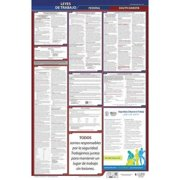 JJ KELLER 400-SD-5 Labor Law Poster,Fed/STA,SD,SP,26inH,5yr