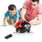 Big Clearance Remote Control Smart Ladybug Insect Robot Toy DIY Robot Kit AMZSE
