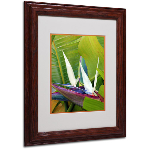 "Trademark Fine Art ""Paradise Color"" Matted Framed Art by Patty Tuggle, Wood Frame"