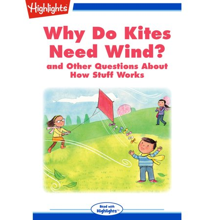 Why Do Kites Need Wind? - Audiobook (The Golden Kite The Silver Wind Characters)