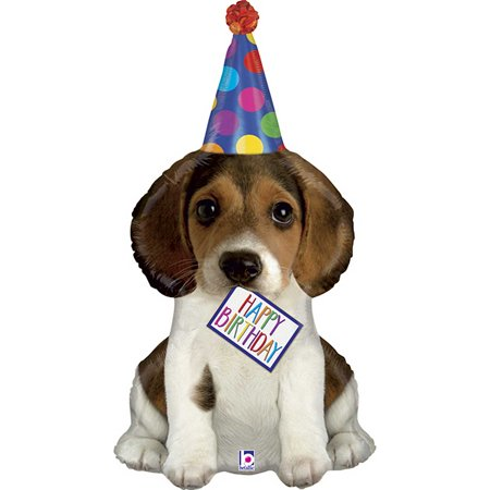 Dog Party Decorations (XL 41