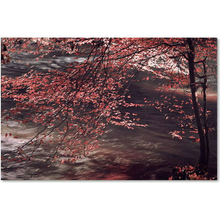 Trademark Fine Art Autumn Serenade Canvas Art by Philippe Sainte-Laudy