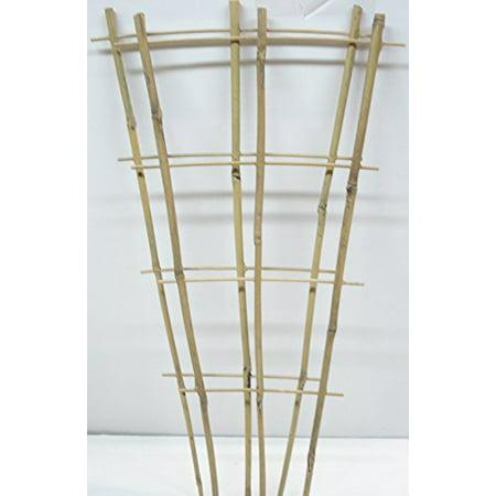 Wooden Trellis - Natural Color Bamboo Trellis 24 inches Tall (Quantity2)