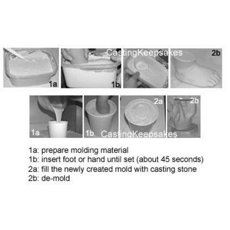 1lb (454g) Create-A-Mold Alginate Molding Powder Life Casting Impression  Material