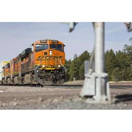 Cargo Train Near Flagstaff, Arizona, Usa Print Wall Art By Rainer Mirau ()