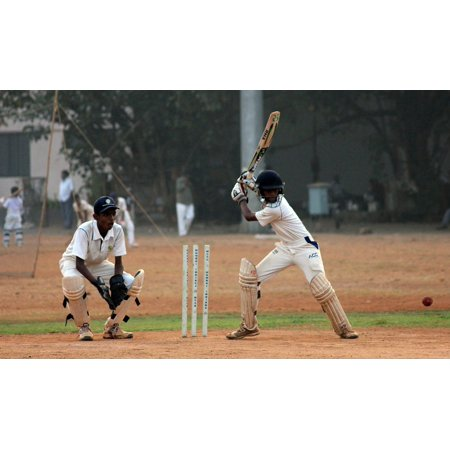 Canvas Print Cricket Ball Game Competition Batsman Player India Stretched Canvas 10 x (Best Cricket Ball Brand In India)