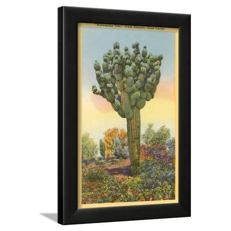 Watermelon Tree, Freak Saguaro Cactus Framed Print Wall Art ...