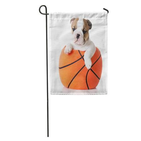 LADDKE Orange Dog Sports Hound Bulldog Puppy Sitting Inside Plush Stuffed Basketball Brown Ball Garden Flag Decorative Flag House Banner 28x40 inch