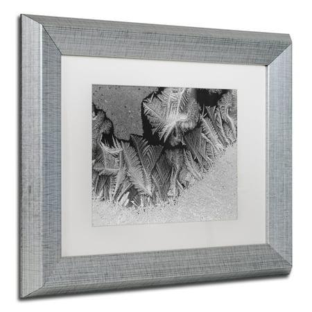 - Trademark Fine Art 'Window Frost Pattern 1' Canvas Art by Kurt Shaffer White Matte, Silver Frame