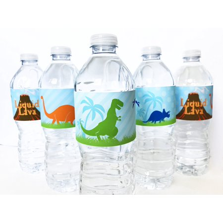 Dinosaur Bottle Wraps - 20 Dinosaur Water Bottle Labels - Made in the USA