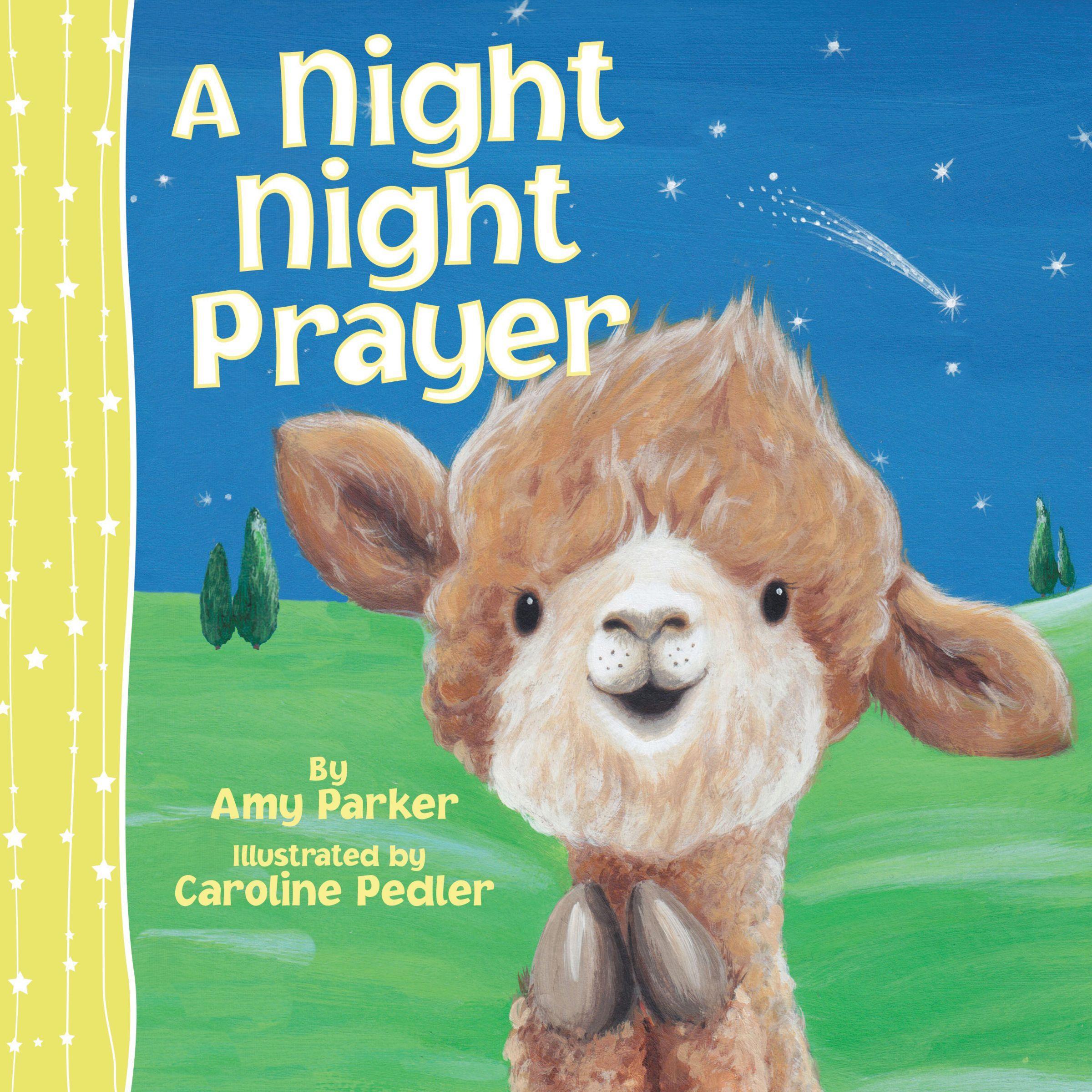 Night Night: A Night Night Prayer (Board Book)