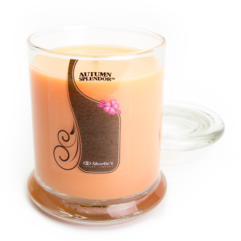 Autumn Splendor Candle - 10 Oz. Highly Scented Orange Jar Candle - Christmas Candles Collection