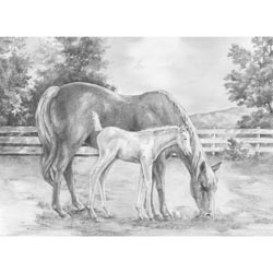 Bulk Buy: Royal Brush (2-Pack) Sketching Made Easy Large Kit 16'X12.75' Horse & Calf SKBNL-8