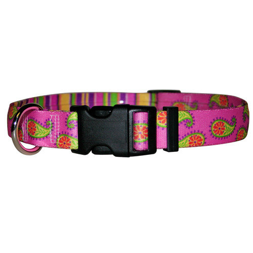 Yellow Dog Design Paisley Standard Collar - Teacup