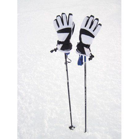 Canvas Print Gloves Pole Season Hand Ice Equipment Poles Cold Stretched Canvas 32 x 24