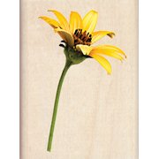 Inkadinkado Mounted Rubber Stamp 3 Inch X 2.25 Inch-Sunflower