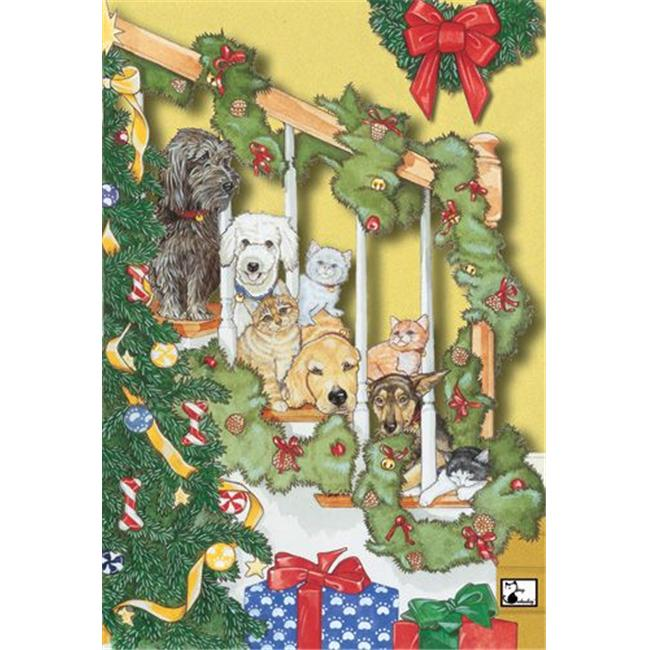 Pipsqueak Productions C964 Mix Dog With Cat Holiday Boxed Cards