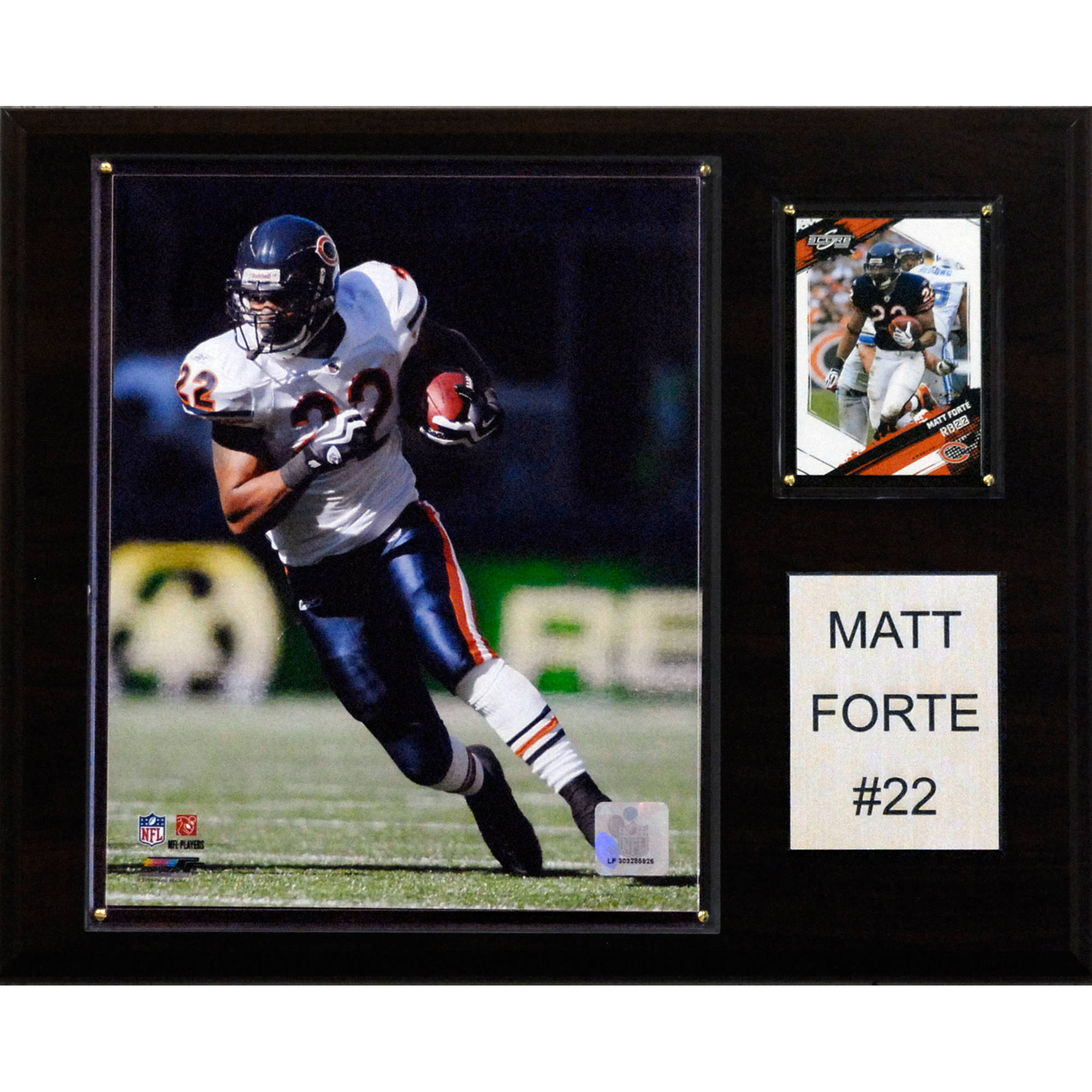C&I Collectables NFL 12x15 Matt Forte Chicago Bears Player Plaque