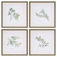 Paragon Herbs II Framed Wall Art - Set of 4