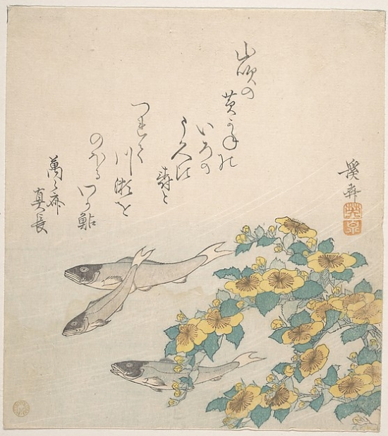 "Fishes Swimming with Yellow Flowers Poster Print by Keisai Eisen (Japanese 1790  ""1848) (18 x 24)"