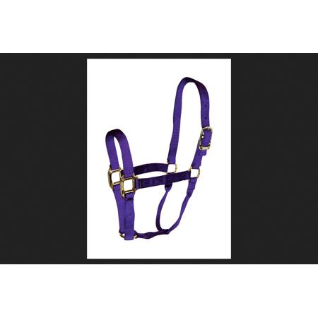 Hamilton Purple Nylon Halter For Horse Average