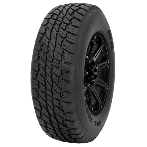 P255/70R17 Ohtsu AT4000 112S B/4 Ply OWL Tire