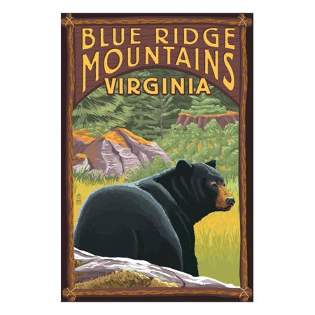 Blue Ridge Mountains, Virginia - Bear in Forest Print Wall Art By Lantern