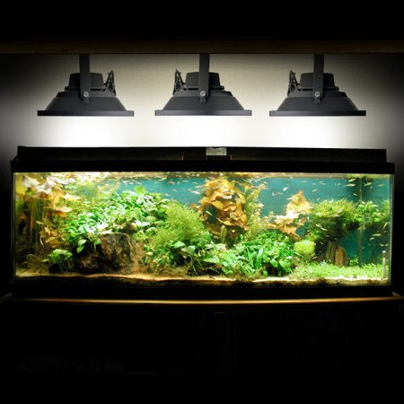 Biltek 30W LED Aquarium Flood Light COOL White High Power Fish Tank Lighting Reef Plant Decor Salt Fresh H2O Main Lighting, Sub Lighting, Fresh Water Tanks, Salt Water